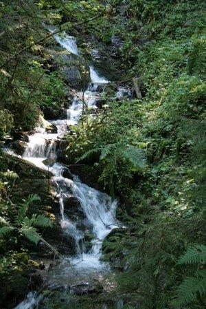 Stromende beek met waterval